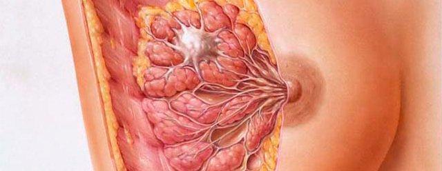 Doctor-David-Martinez-Ramos-Cirujano-General-Castellon-CANCER-MAMA2